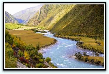 Tibetan herbal medicine
